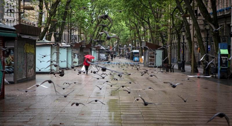 Decenas de palomas sobrevuelan las Ramblas de Barcelona. EFE/ Enric Fontcuberta.