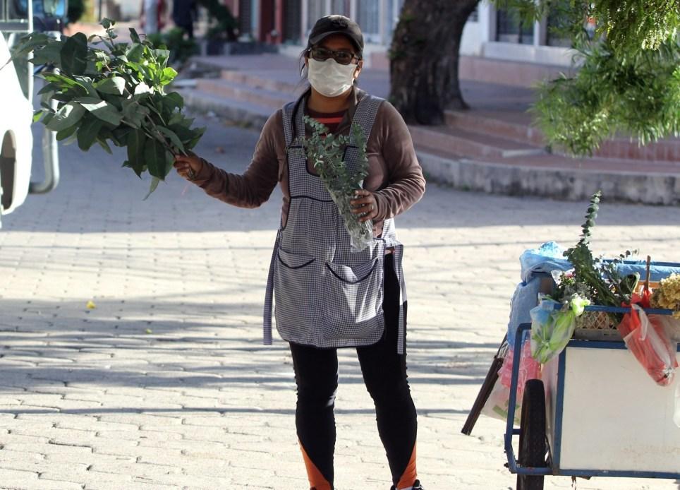 Una mujer vende eucalipto, entre otros remedios caseros, en una calle en la ciudad boliviana de Santa Cruz de la Sierra. EFE/Juan Carlos Torrejón